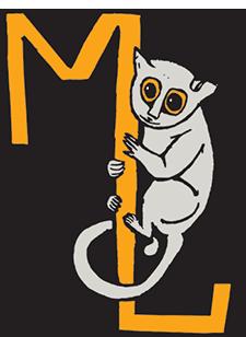 MonkeyLemur